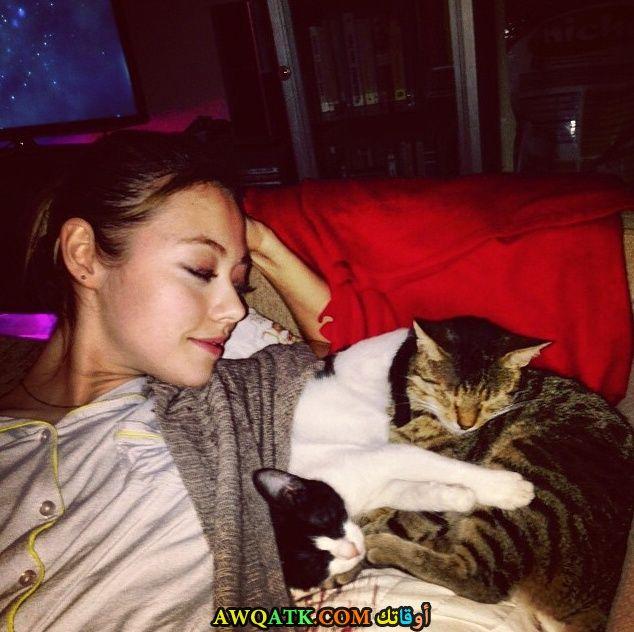 غوزدي كايا مع قططها