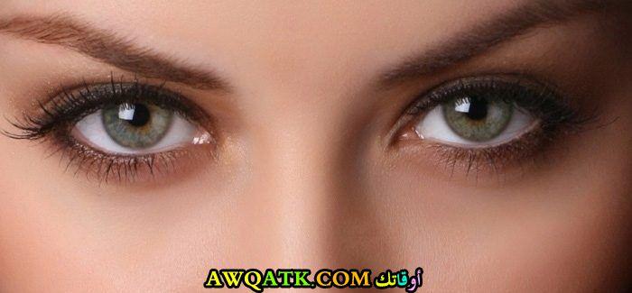 عينين براقتين