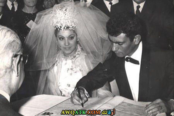 صورة من حفل زفاف نبهات شيهري