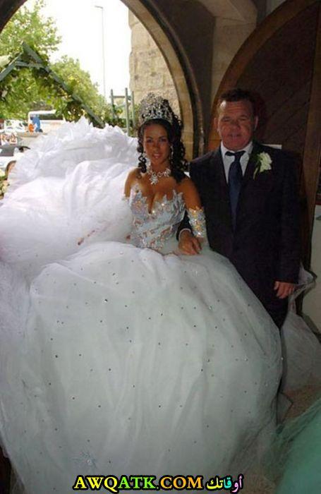 أطول فستان زفاف