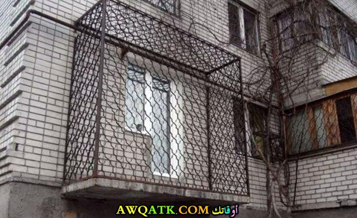 تشبه السجن