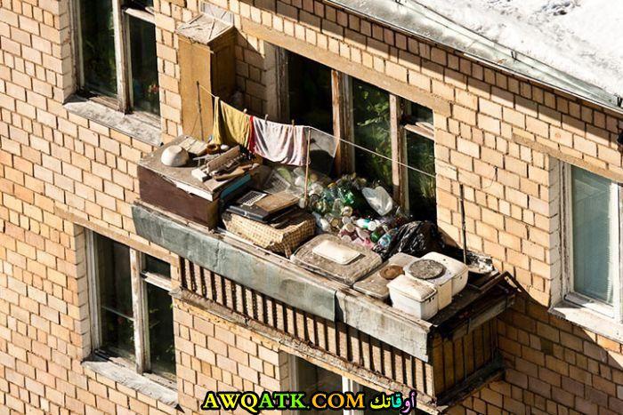 طرائف الأحياء الفقيرة