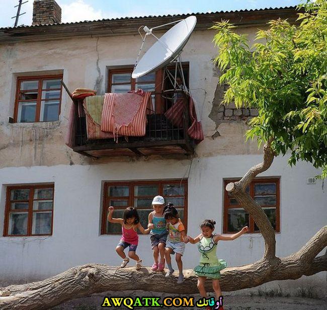 في الأحياء الفقيرة