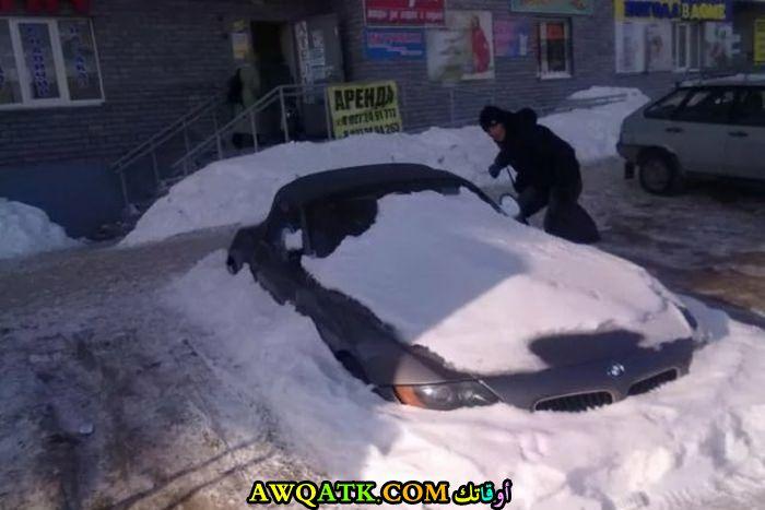 مغطاة بالثلوج