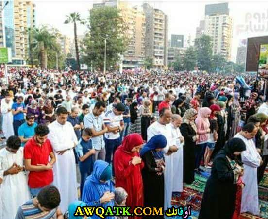 صلاة مختلطة في مصر
