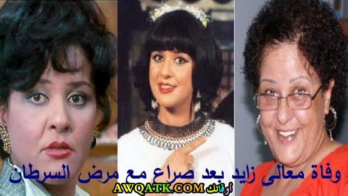 صورة مجمعة جميلة للفنانة المصرية معالي زايد