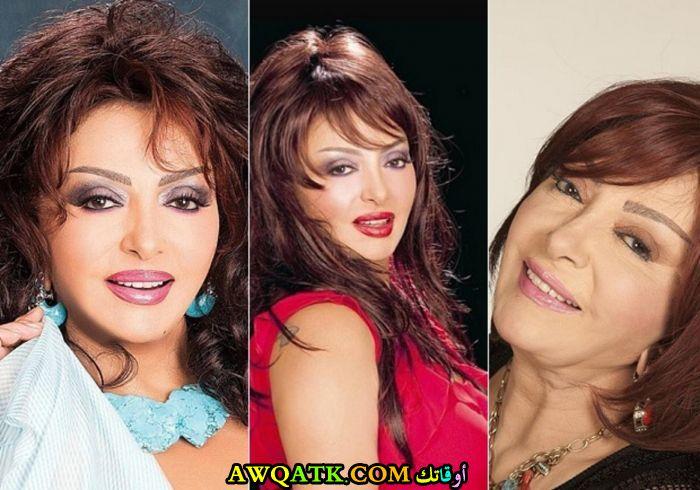 صورة مجمعة جميلة للفنانة المصرية نبيلة عبيد