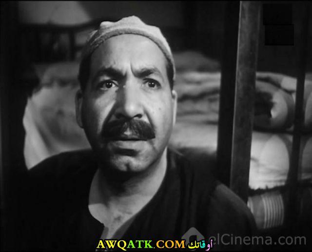 أحمد الجزيري