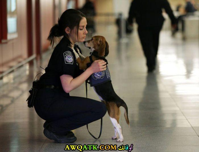 الظابط مع الكلب المدرب