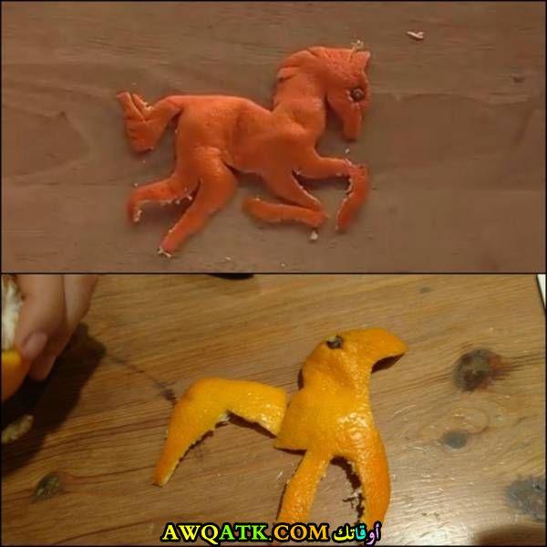حصان بقشر البرتقال