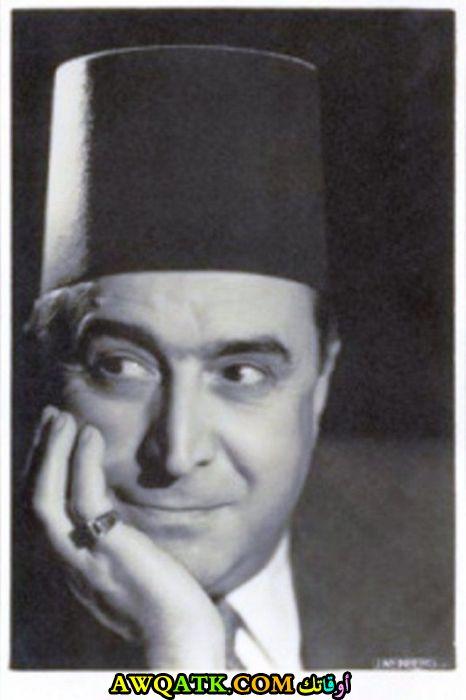 سليمان نجيب