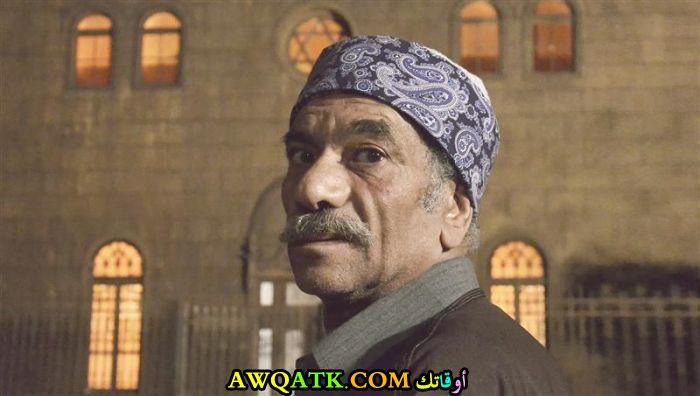 سيد رجب
