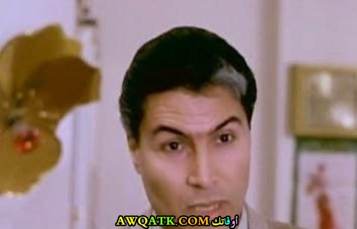سيف عبد الرحمن