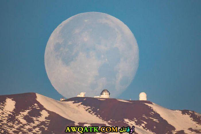 صورة عجيبة للقمر