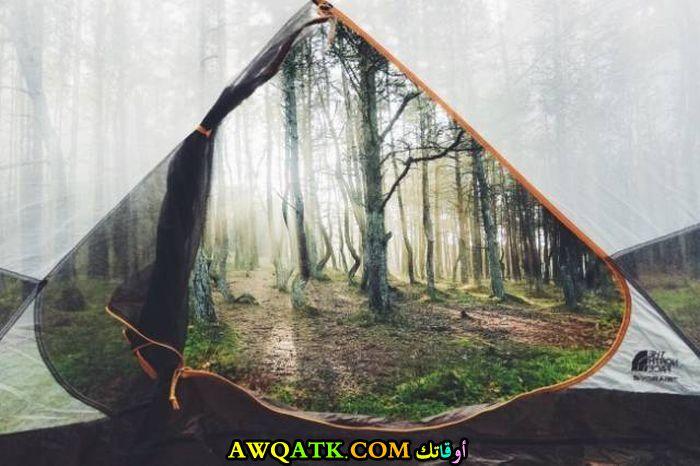صورة من داخل خيمة