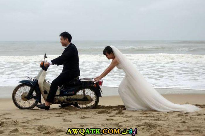 عروسة شقيانة