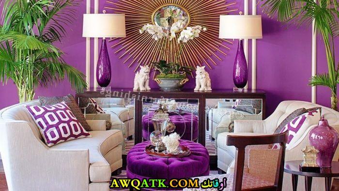 غرفة معيشة باللون البنفسجي في متنهي الروعة