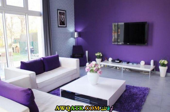 غرفة معيشة باللون البنفسجي قمة في الشياكة