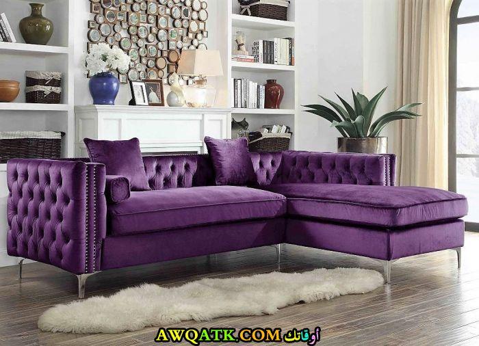 غرفة معيشة باللون البنفسجي حلوة جداً وشيك