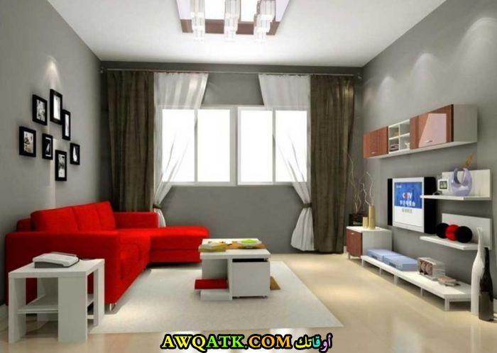 غرفة معيشة بألوان مبهجة شيك جداً