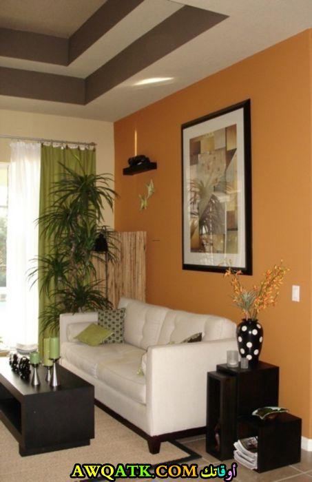 غرفة معيشة بألوان مبهجة رائعة وشيك