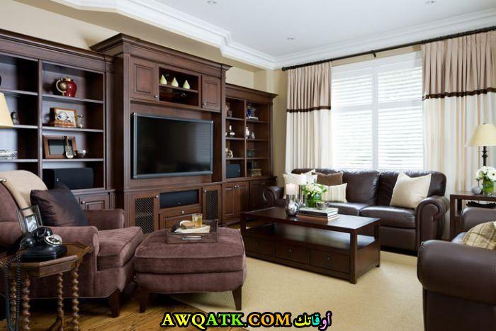 غرفة معيشة أمريكية باللون البني