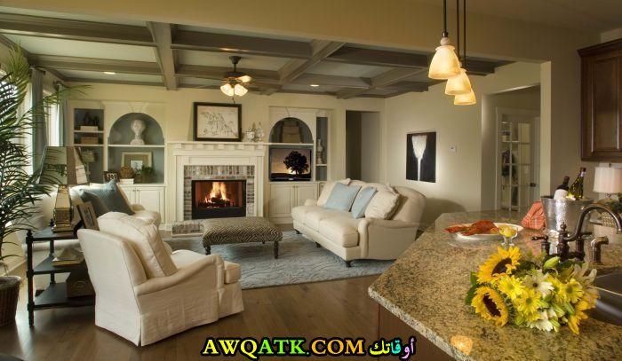 غرفة معيشة تناسب الذوق الهادي