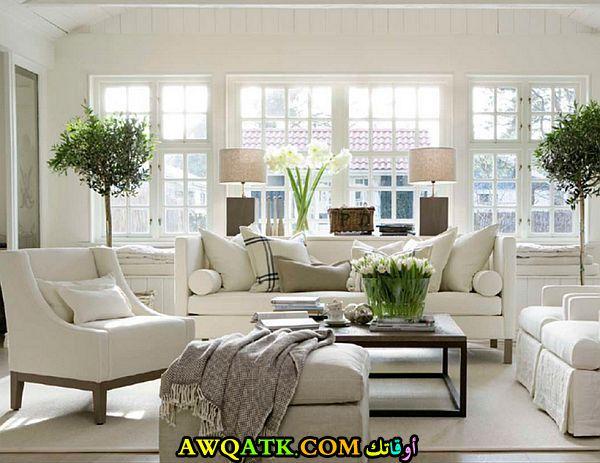 غرفة معيشة أنيقة وجميلة جداً