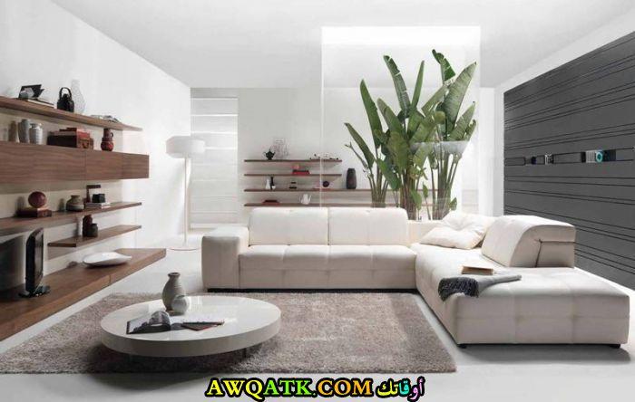 غرفة معيشة حديثة تناسب الذوق الهادي