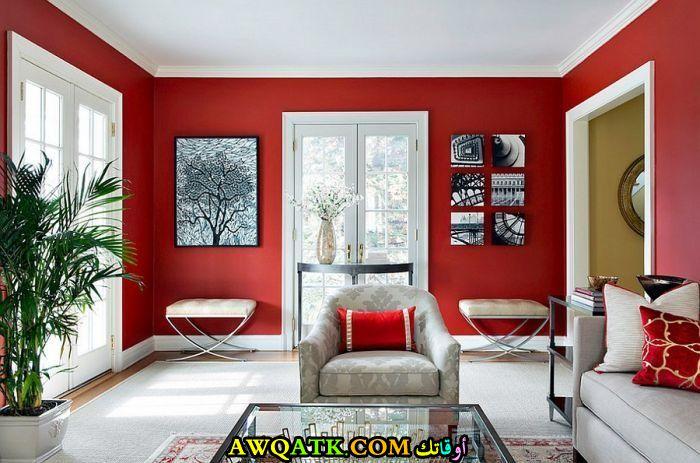 غرفة معيشة باللون الأحمر رائعة