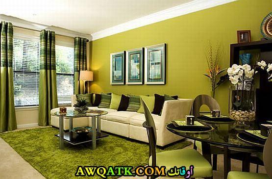 غرفة معيشة باللون الأخضر تناسب الذوق الراقي