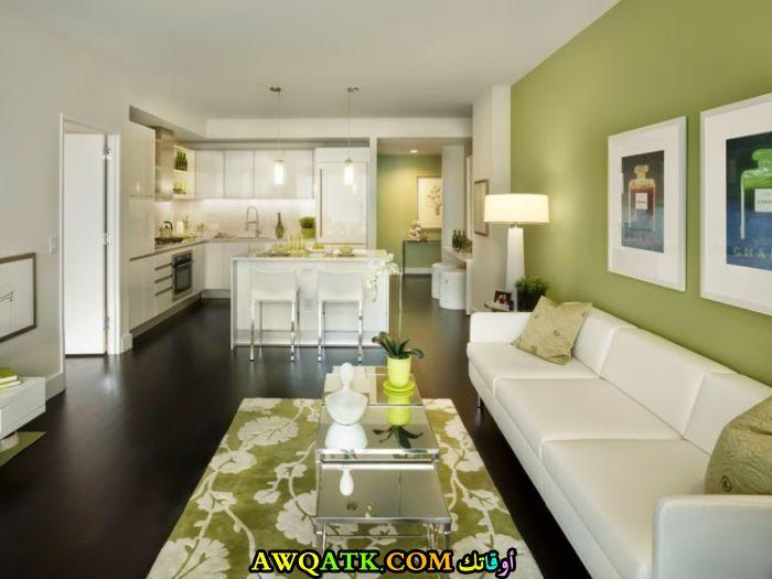 غرفة معيشة باللون الأخضر بسيطة وجميلة