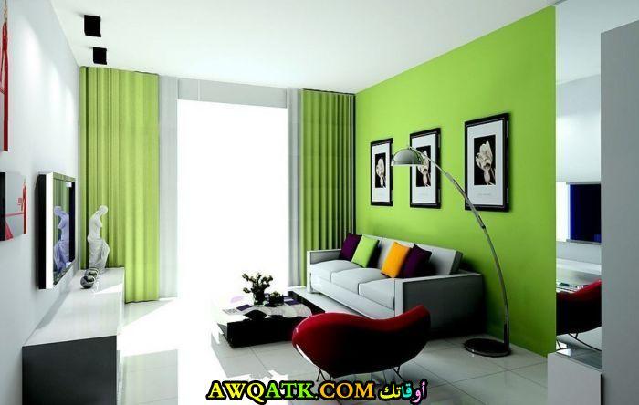 غرفة معيشة خضراء شيك جداً
