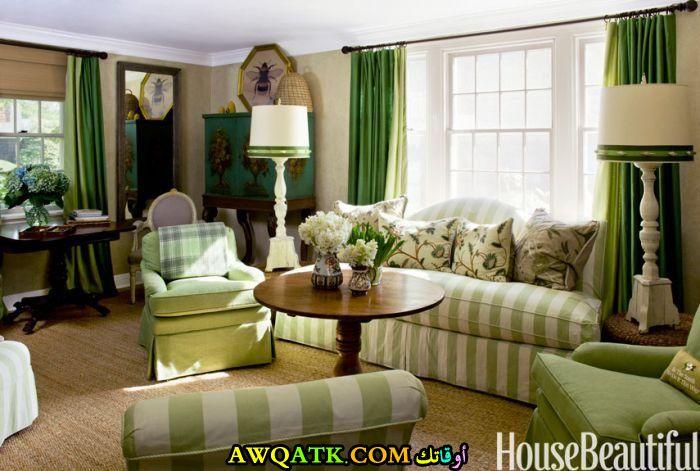 غرفة معيشة باللون الأخضر أنيقة وجميلة