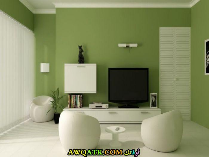 غرفة معيشة باللون الأخضر مودرن وجميلة