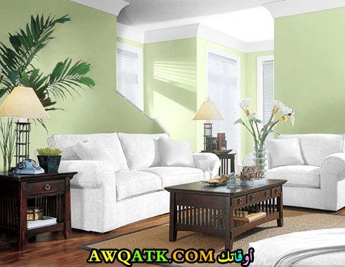 غرفة معيشة باللون الأخضر قمة في الشياكة