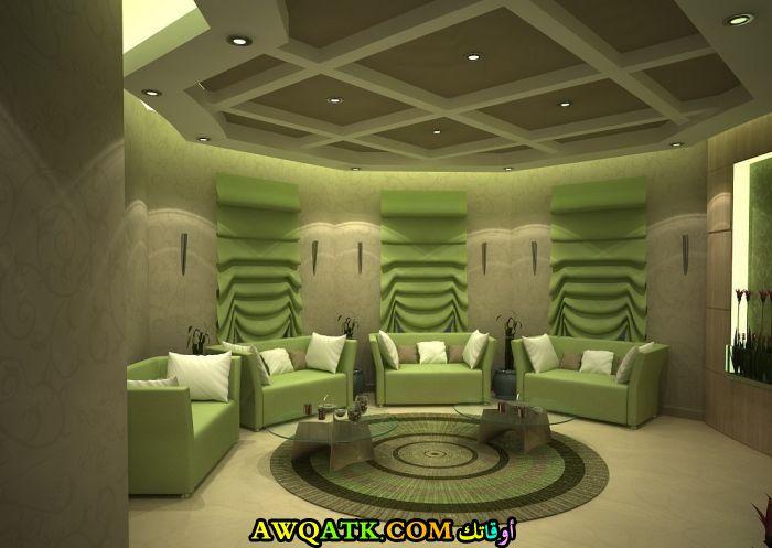 غرفة معيشة باللون الزيتي رائعة