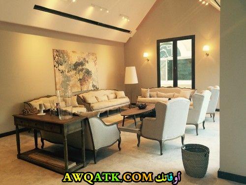 غرفة معيشة سعودية أنيقة وجميلة