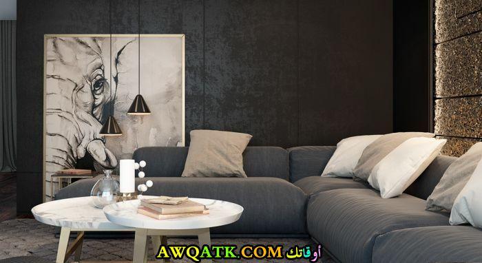غرفة معيشة هادية وبسيطة جداً باللون الأسود