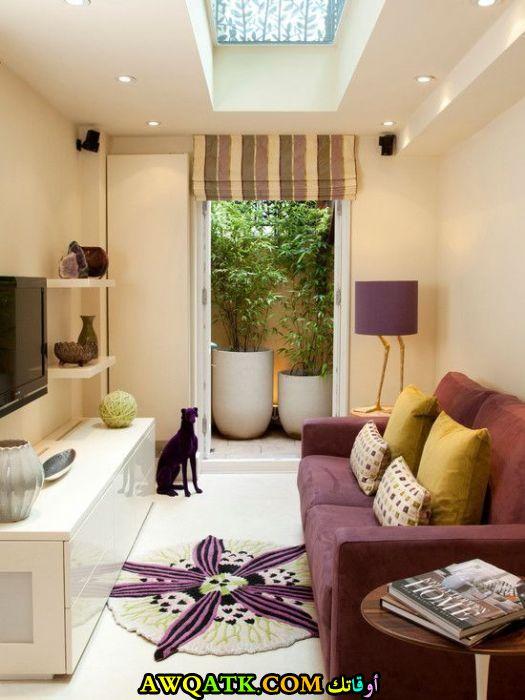 غرفة معيشة صغيرة الحجم حلوة جداً وشيك