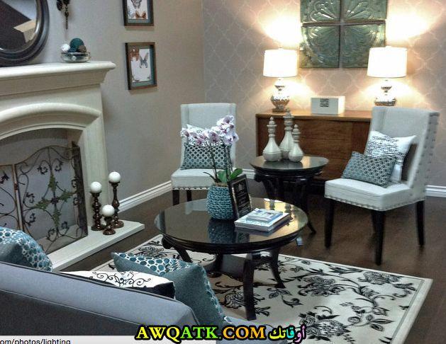 غرفة معيشة صغيرة الحجم فخمة وشيك