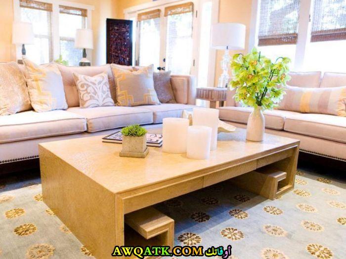 غرفة معيشة صغيرة الحجم قمة في الجمال