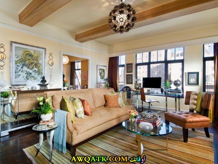غرفة معيشة صغيرة الحجم أنيقة وجميلة