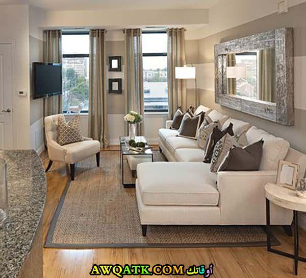 غرفة معيشة صغيرة الحجم جديدة وعصرية