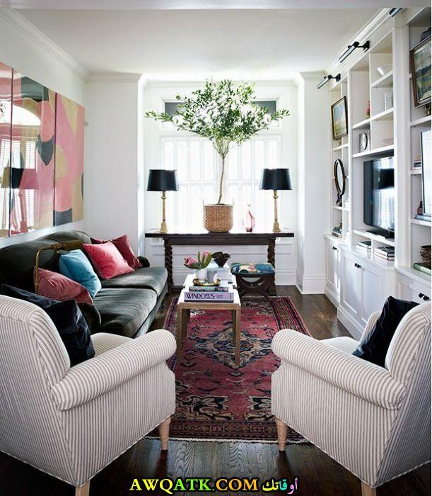 غرفة معيشة ضيقة هادية وجميلة