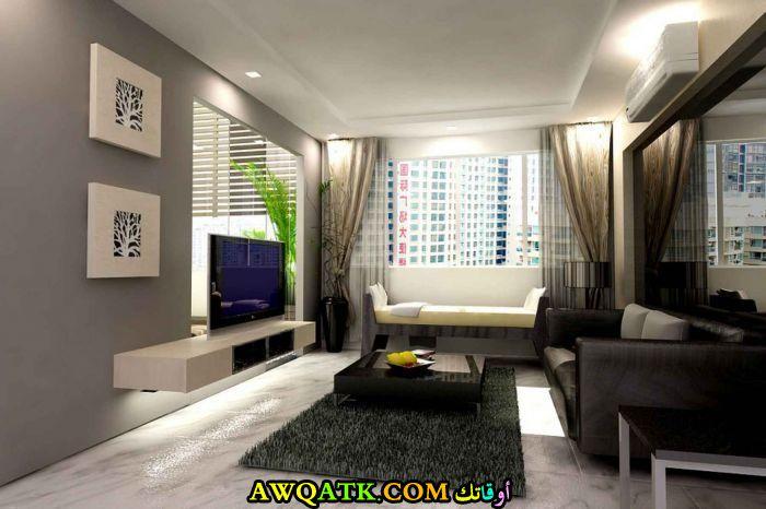 غرفة معيشة ضيقة في منتهي الروعة والجمال