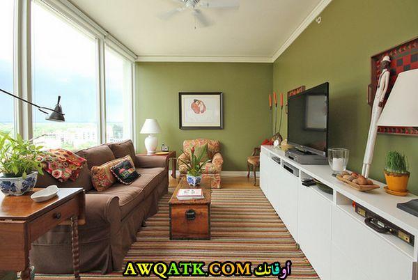 غرفة معيشة ضيقة أنيقة وجميلة