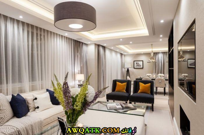 غرفة معيشة طويلة جميلة جداً