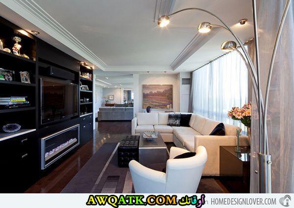 غرفة معيشة طويلة في منتهي الجمال والشياكة