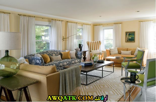 غرفة معيشة طويلة رائعة